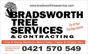 Bradsworth Tree Services & Cntracting